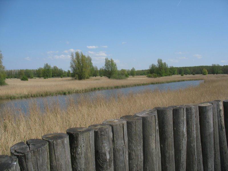 Lauwersmeer Rechteind Kijkheuvel Vogelkijkhut Nl